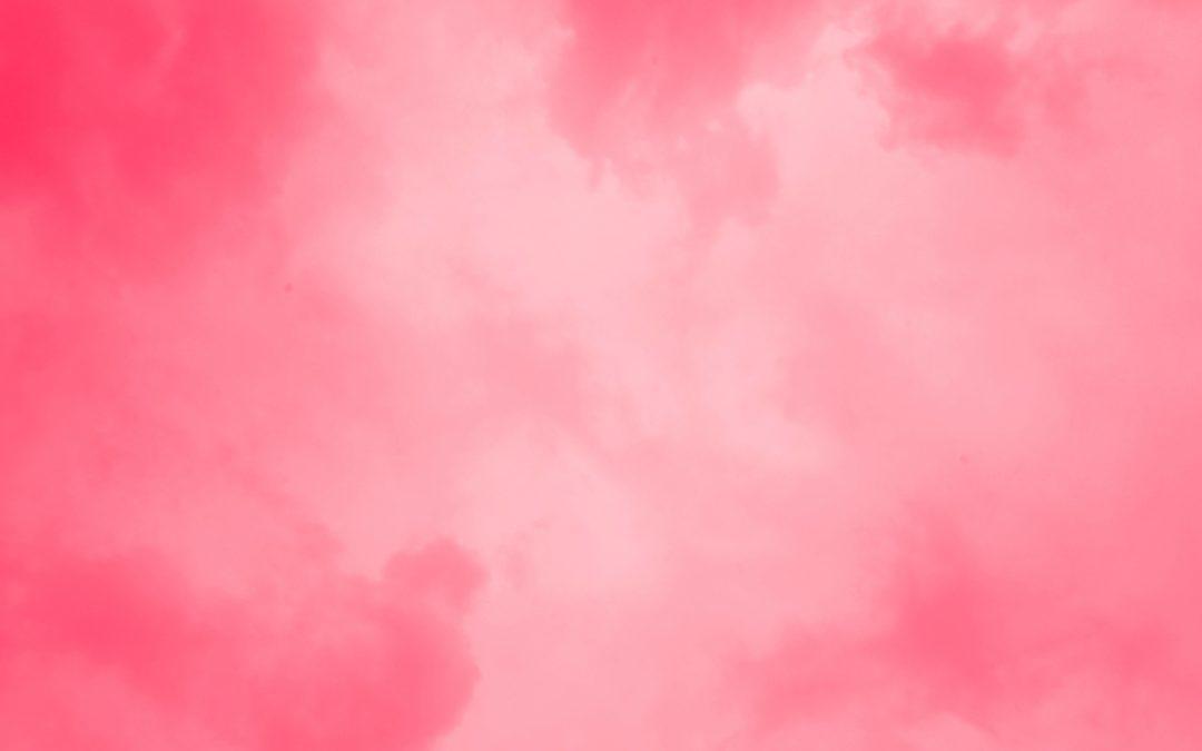 Продавач ципела / Шифра: Ружичасте ципеле