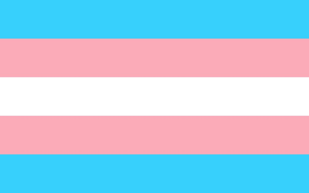 Kršenje prava transrodnih osoba na privatni i porodični život, sklapanje braka i oduzimanje prava na samoodređenje